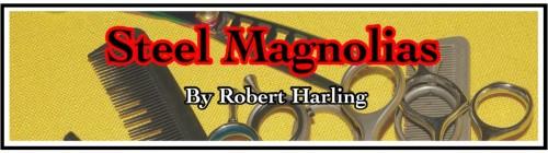 Magnolias Banner - 150 dpi