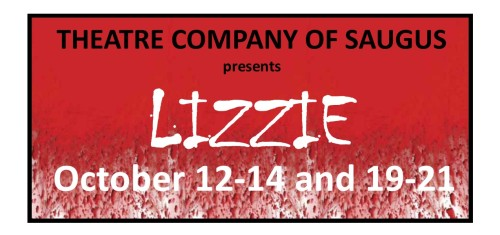 TCS Lizzie FB Banner
