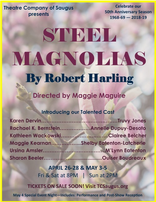 Steel Magnolias Poster 8.5x11 for FB